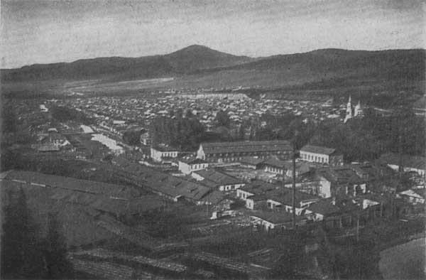 Вид на поселок Сим, где родился Курчатов