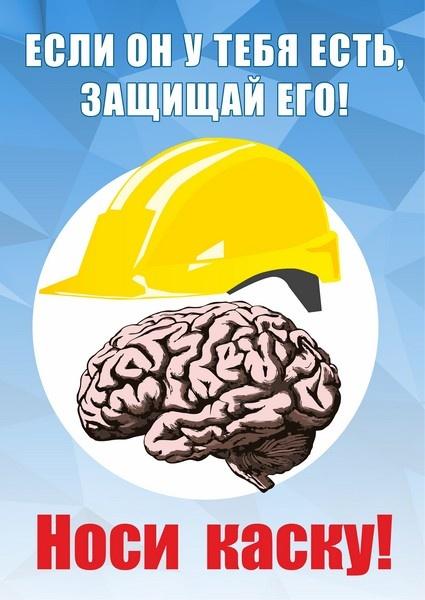 Береги мозги