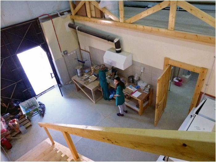 Собственно лаборатория в ангаре
