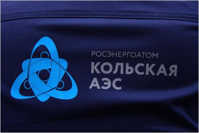 Наспинное лого