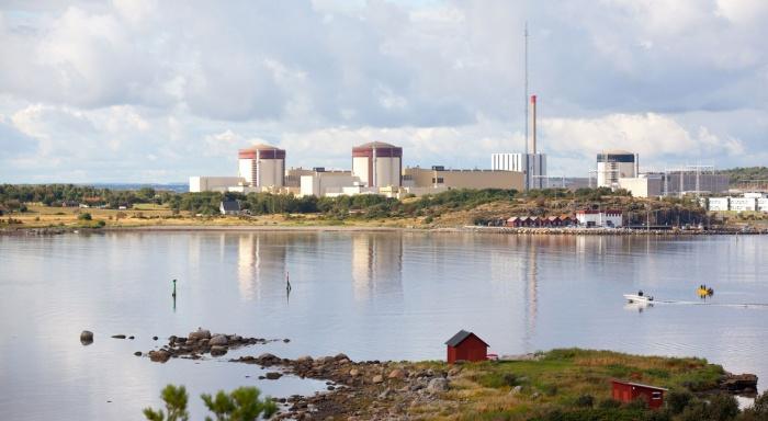 АЭС Рингхальс