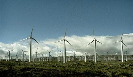 Ветряная электростанция Whitlee в Шотландии