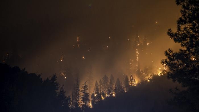 Лесной пожар. Фото: Matt Howard