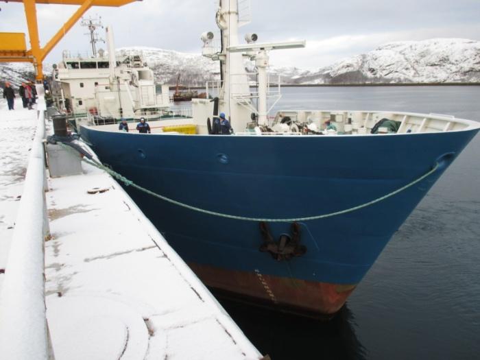 Многофункциональное судно-контейнеровоз Россита
